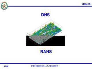 DNS RANS