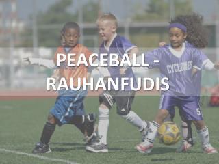 PEACEBALL - RAUHANFUDIS