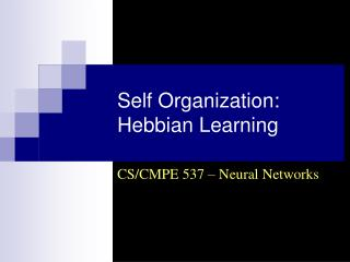 Self Organization: Hebbian Learning