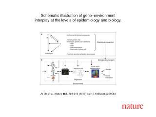 JV Os  et al. Nature 468 , 203-212 (2010) doi:10.1038/nature09563