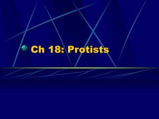 Ch 18: Protists