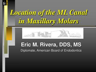 Location of the ML Canal in Maxillary Molars