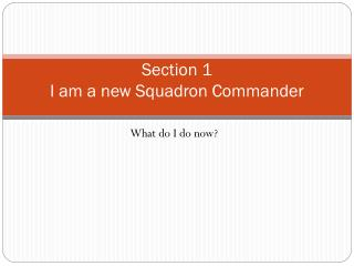 Section 1                                                      I am a new Squadron Commander