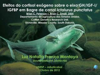 Luz Natalia Franco Montoya Doutoranda em  Zootecnia UNESP –  Jaboticabal  . Otubro  de 2012