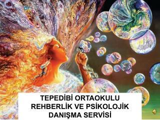 TEPEDİBİ ORTAOKULU  REHBERLİK VE PSİKOLOJİK DANIŞMA SERVİSİ