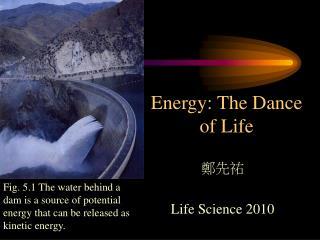 Energy: The Dance of Life