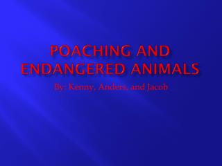 Poaching And Endangered Animals