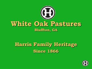 White Oak Pastures Bluffton, GA