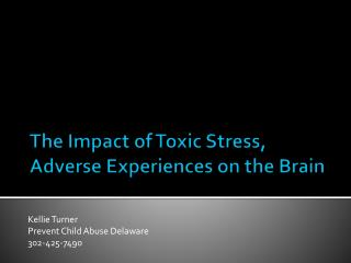 The Impact of Toxic Stress, Adverse Experiences on the Brain