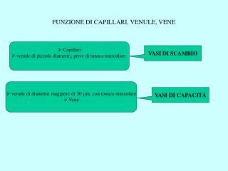 FUNZIONE DI CAPILLARI, VENULE, VENE