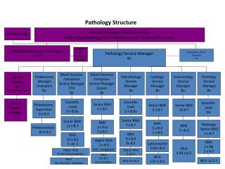 Pathology Structure