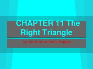 CHAPTER 11 The Right Triangle