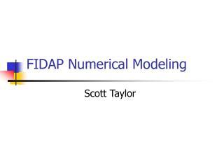 FIDAP Numerical Modeling