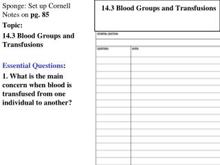 Sponge: Set up Cornell Notes on  pg. 85 Topic:  14.3 Blood Groups and Transfusions