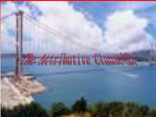 The Attributive Clause(2)