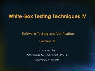 White-Box Testing Techniques IV