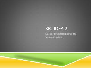 Big idea 2