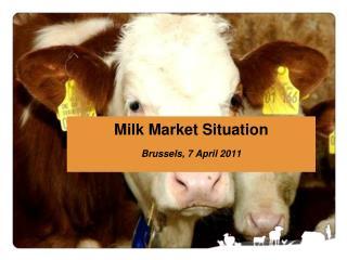 Milk Market Situation Brussels, 7 April 2011