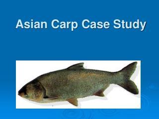 Asian Carp Case Study