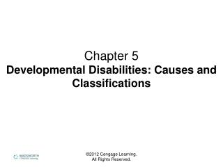 Chapter 5 Developmental Disabilities: Causes and Classifications