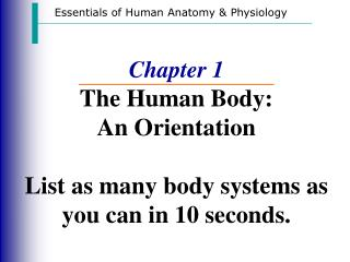 Chapter 1 The Human Body: An Orientation List as many body systems as you can in 10 seconds.