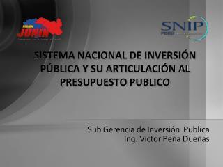 SISTEMA NACIONAL  DE INVERSIÓN PÚBLICA Y SU ARTICULACIÓN AL PRESUPUESTO PUBLICO