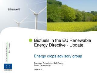 Biofuels in the EU Renewable Energy Directive - Update