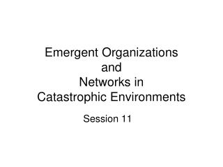 Emergent Organizations  and  Networks in  Catastrophic Environments