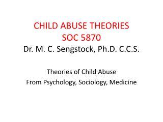 CHILD ABUSE THEORIES SOC 5870 Dr. M. C. Sengstock, Ph.D. C.C.S.