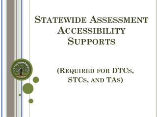 Statewide Assessment Accessibility Supports (Required for DTCs,     STCs, and TAs)