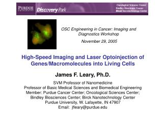 High-Speed Imaging and Laser Optoinjection of Genes