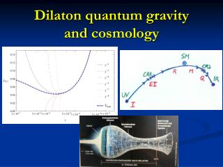 Dilaton quantum gravity and cosmology
