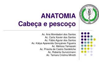 ANATOMIA  Cabe�a e pesco�o