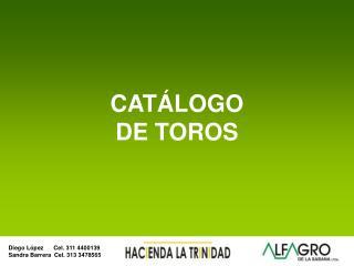 CAT LOGO DE TOROS