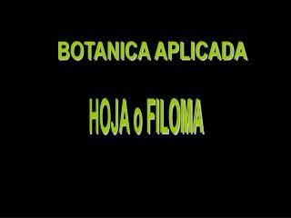 BOTANICA APLICADA