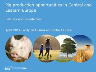 Pig production opportunities in Central and Eastern Europe