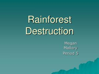 Rainforest Destruction