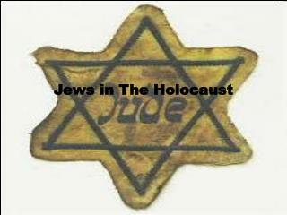 Jews in The Holocaust