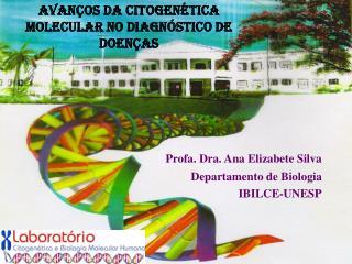 Profa. Dra. Ana Elizabete Silva                         Departamento de Biologia