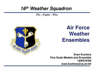 Air Force Weather Ensembles