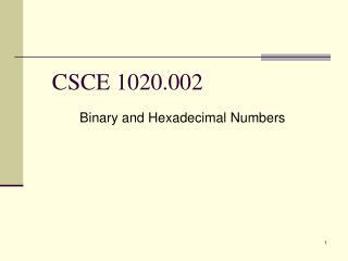CSCE 1020.002