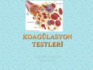 KOAGÜLASYON TESTLERİ MEHMET YANAR kasım-2009