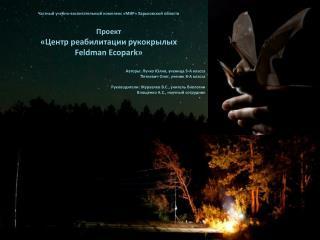 Частный учебно-воспитательный комплекс «МИР» Харьковской области Проект