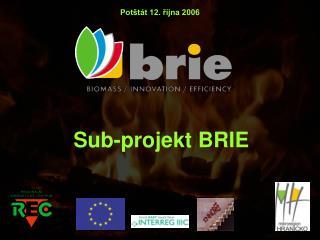 Sub-projekt BRIE