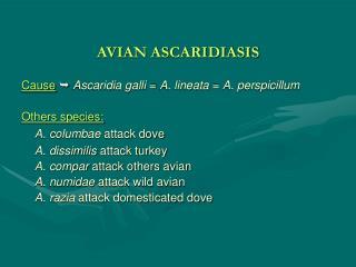 AVIAN ASCARIDIASIS