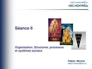 Séance  6 Organisation: Structures, processus  et systèmes sociaux