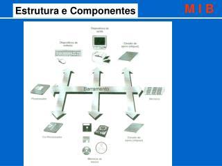 Estrutura e Componentes
