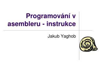 P rogramování v asembleru - instrukce