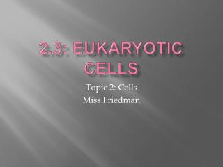 2.3: Eukaryotic Cells