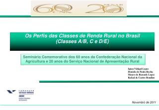 Os Perfis das Classes de Renda Rural no Brasil (Classes A/B, C e D/E)
